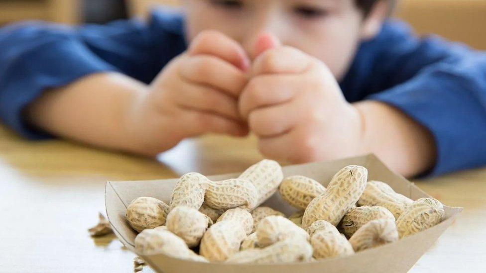 Niño comiendo maníes o cacahuetes