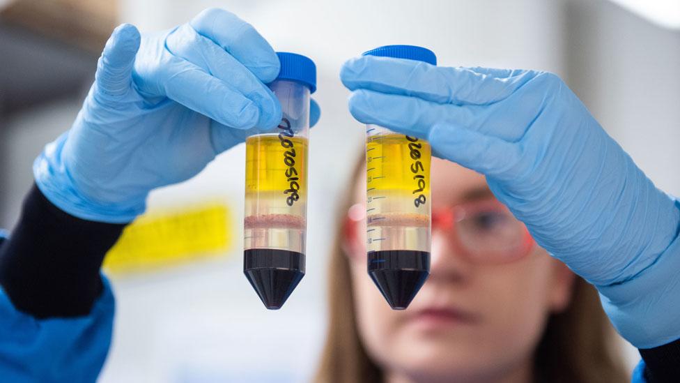 Mulher em laboratório olha para dois tubos com líquidos