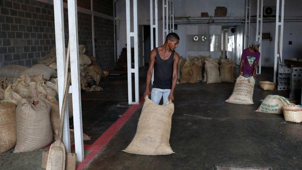عمليات تخزين محصول الكاكاو
