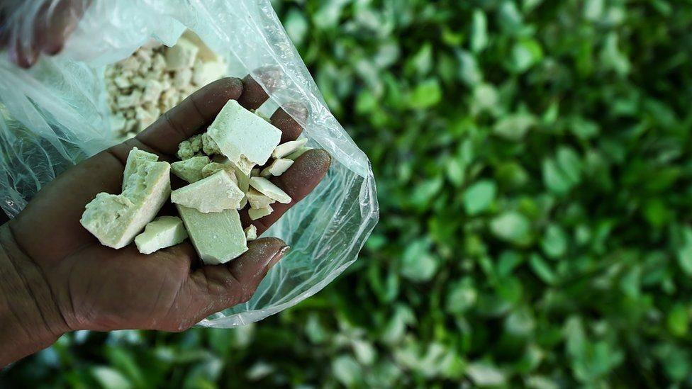 У Колумбії виробництво наркотиків сягнуло рекорду
