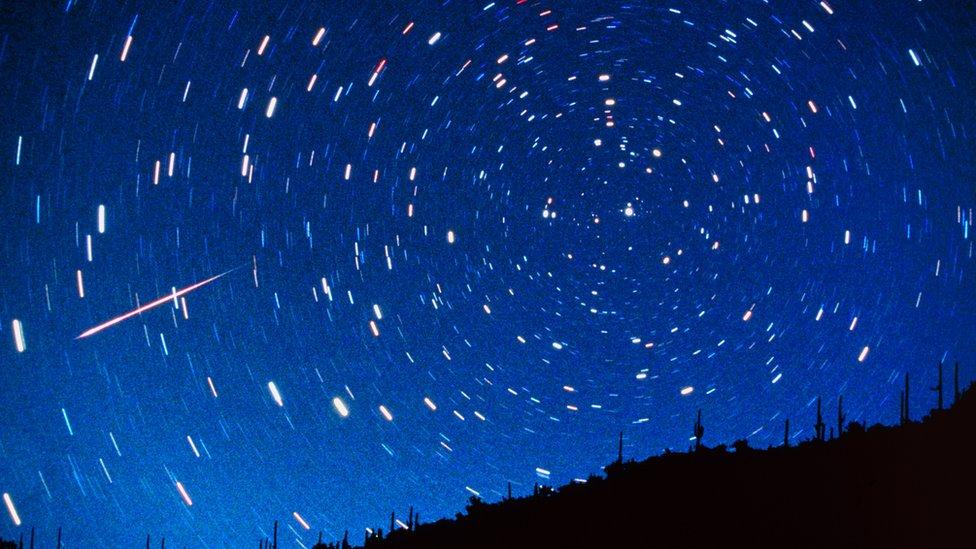 Estrellas fugaces en el cielo sobre árboles