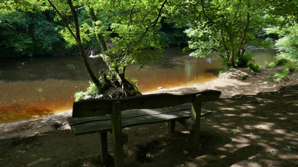 Bench dedicated to Dame Thora Hird at Knaresborough