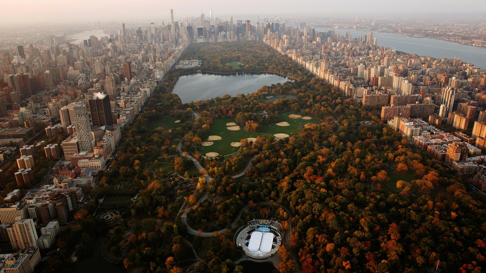 The rising sun lights trees in Central Park above the southern portion of the Manhattan borough of New York