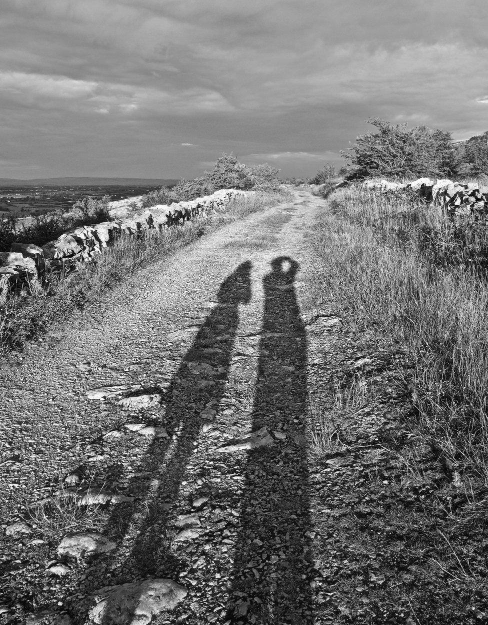 Shadows on a path