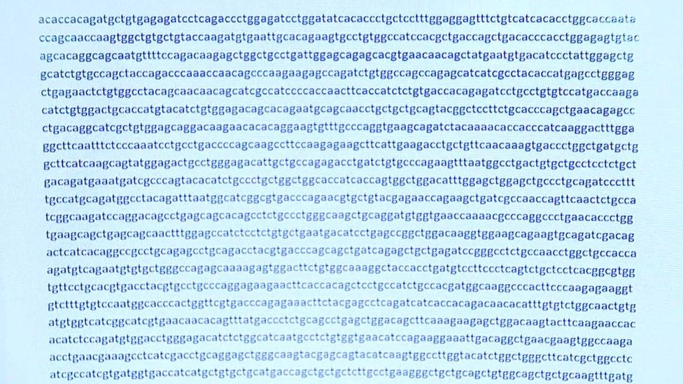 Parte del código genético del nuevo coronavirus