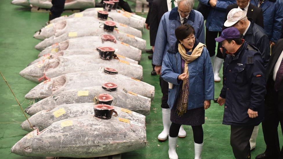 """أسماك ضخمة في سوق """"تيوسو"""" باليابان"""