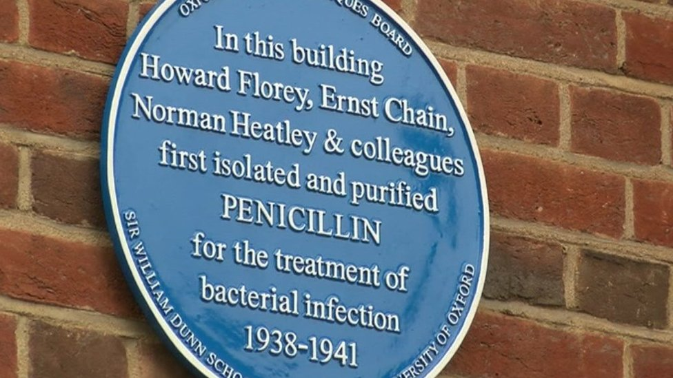 Blue plaque at Sir William Dunn School of Pathology