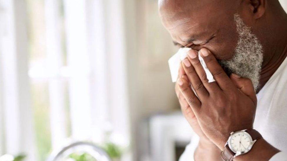 يصيب فيروس الإنفلونزا الملايين سنويا وله تبعات جسيمة على الاقتصاد