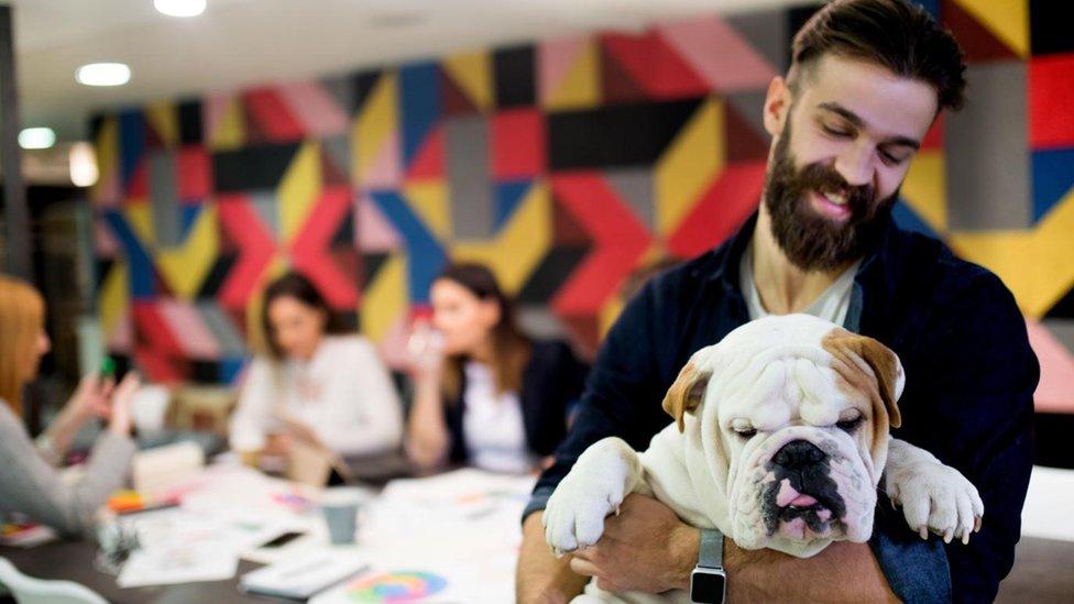 Joven con perro en una oficina.