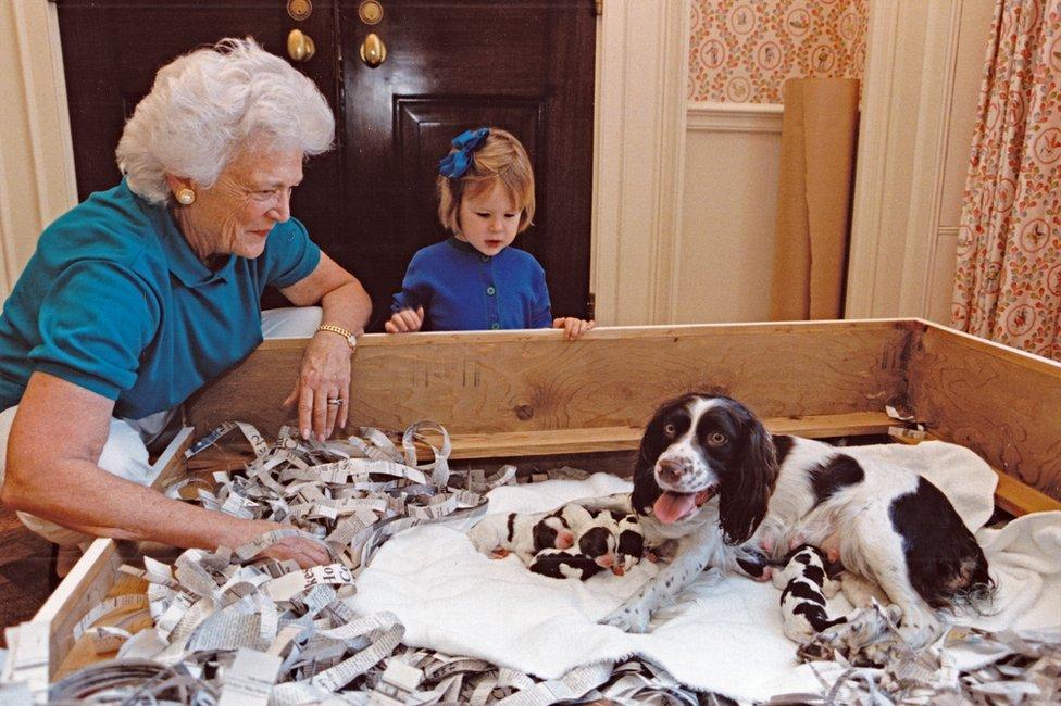 السيدة الأولى باربرا بوش وحفيدتها، مارشال لويد بوش، تلقيان نظرة على كلب بوش الأليف ميلي وجرائها في عام 1989.
