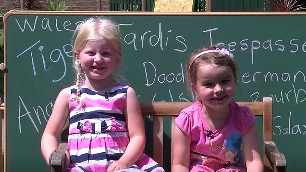 'Doodle is a dog': Welsh children on what words mean to them