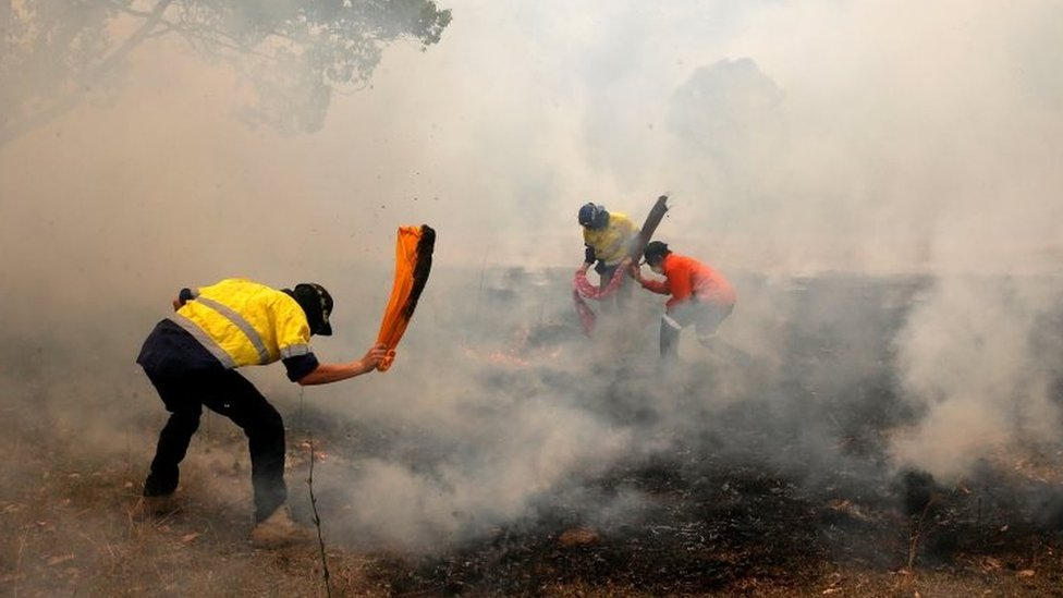 Locals try to put out spot fires near Taree in New South Wales