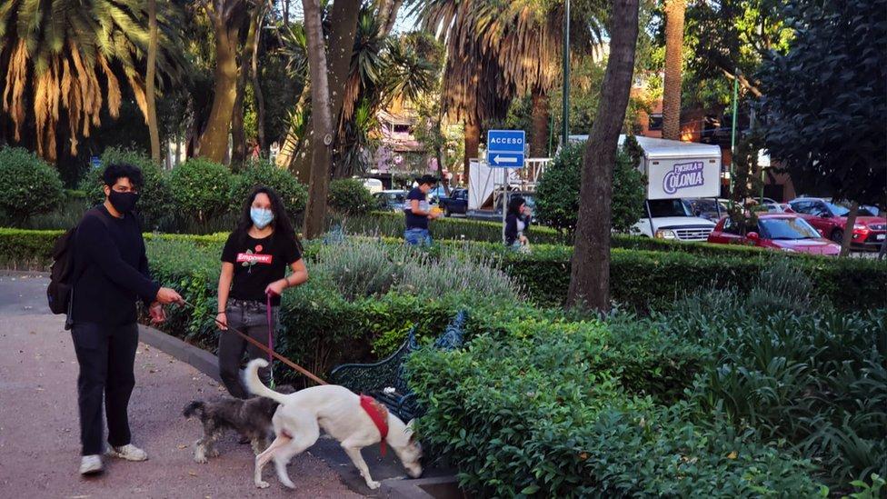 Parque de Narvarte
