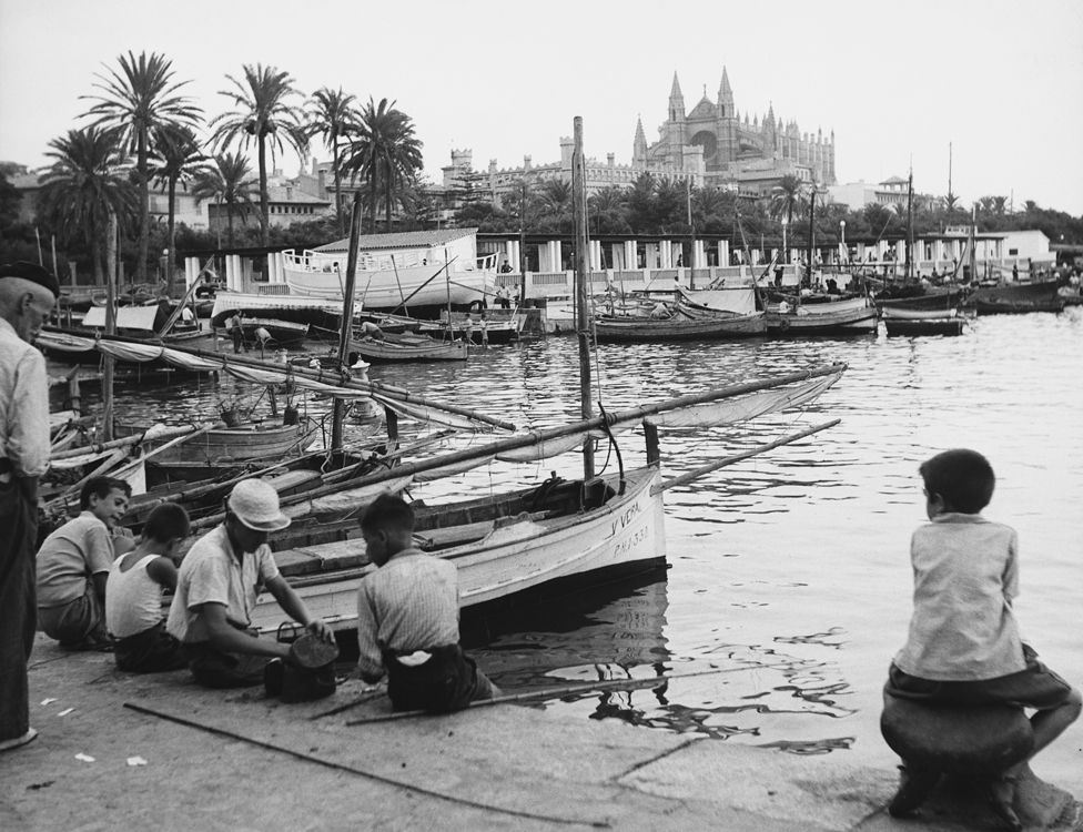 The harbour in Palma
