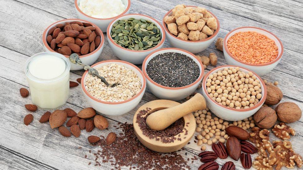 Fuentes veganas de proteínas