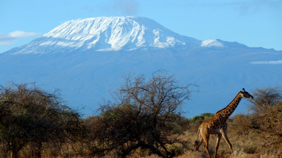 Kilimanjaro: Firefighters battle to contain blaze on Africa's tallest mountain