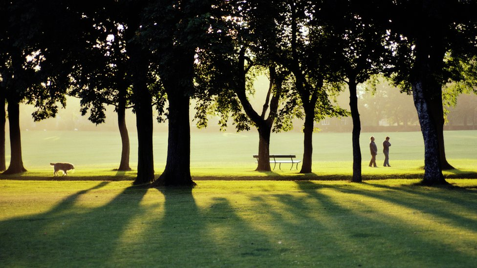 Personas en parque