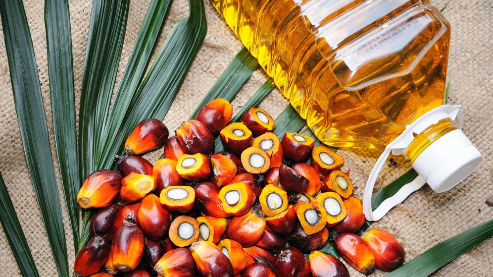 Frutos de la palma de aceite junto a una botella de aceite de palma