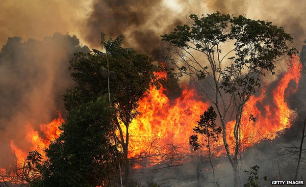 A fire burns along a highway in a deforested section of the Amazon basin in 2014