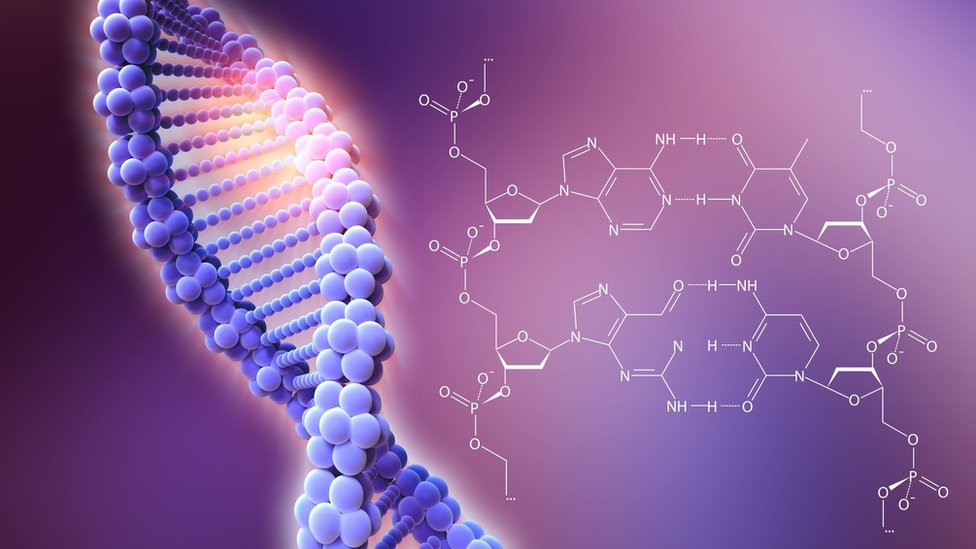 CRISPR-Cas9 基因編輯技術示意圖