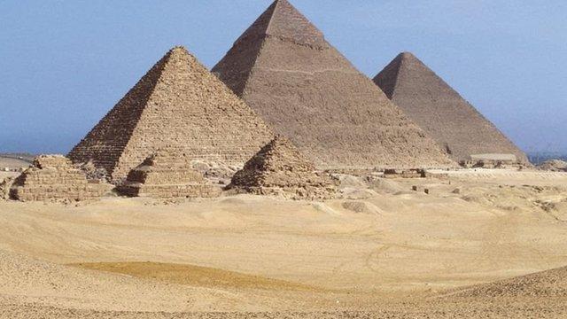蘑菇在古埃及極受尊重,只有王室成員才能吃。