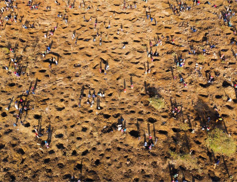 أشخاص يحفرون في الأرض