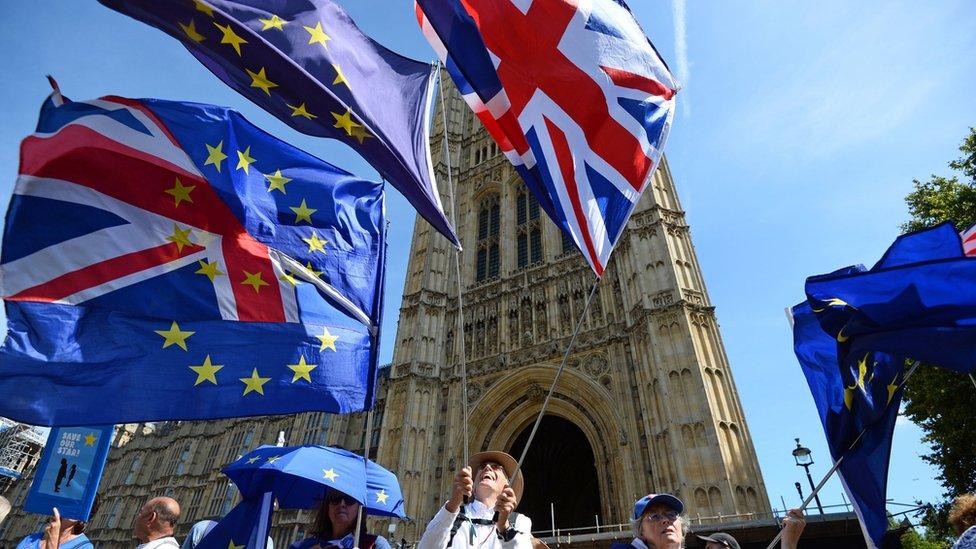 英國反對脫歐人士在議會附近舉行抗議示威