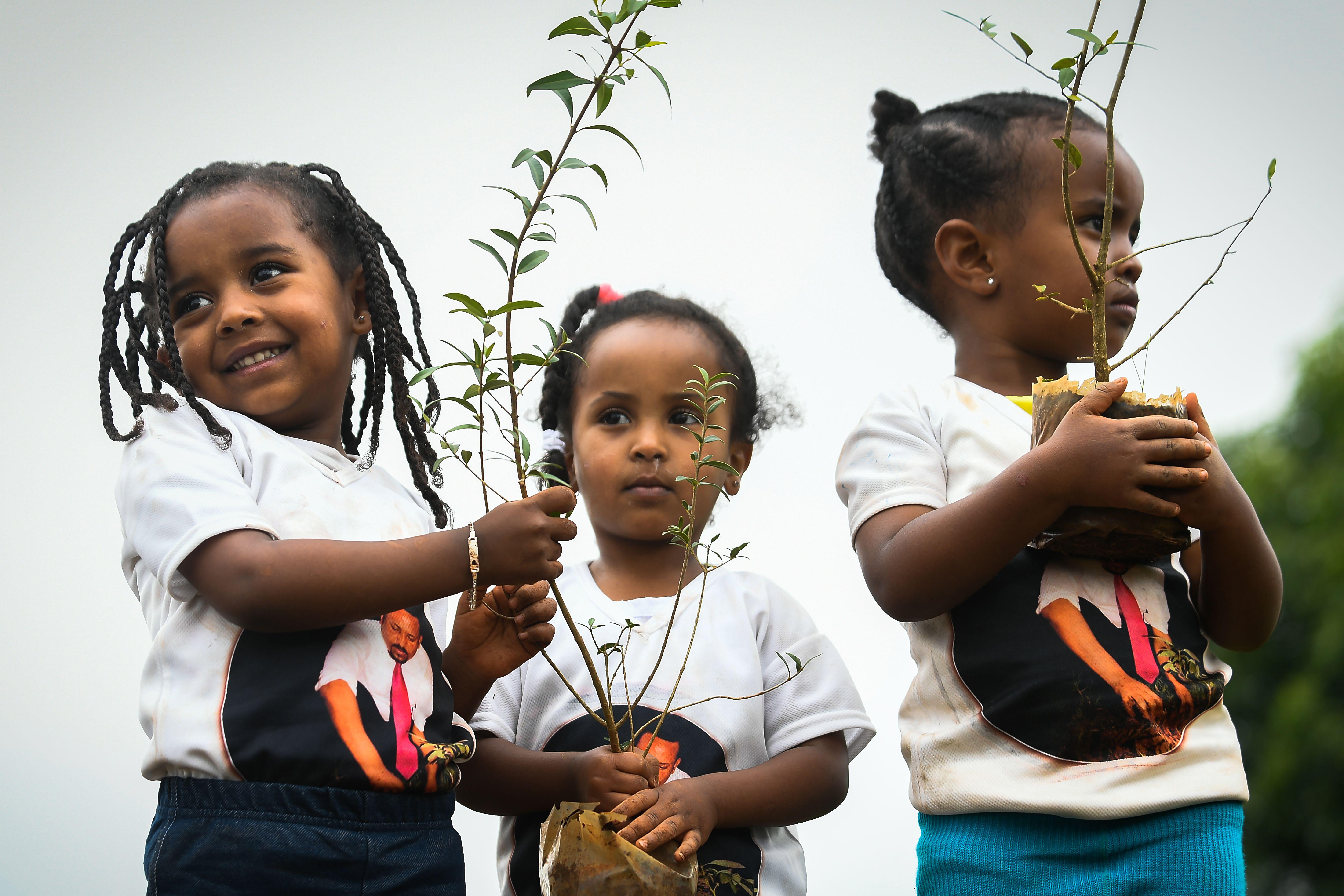 ثلاث فتيات يحملن شتلات ضمن مبادرة زراعة الأشجار في أثيوبيا