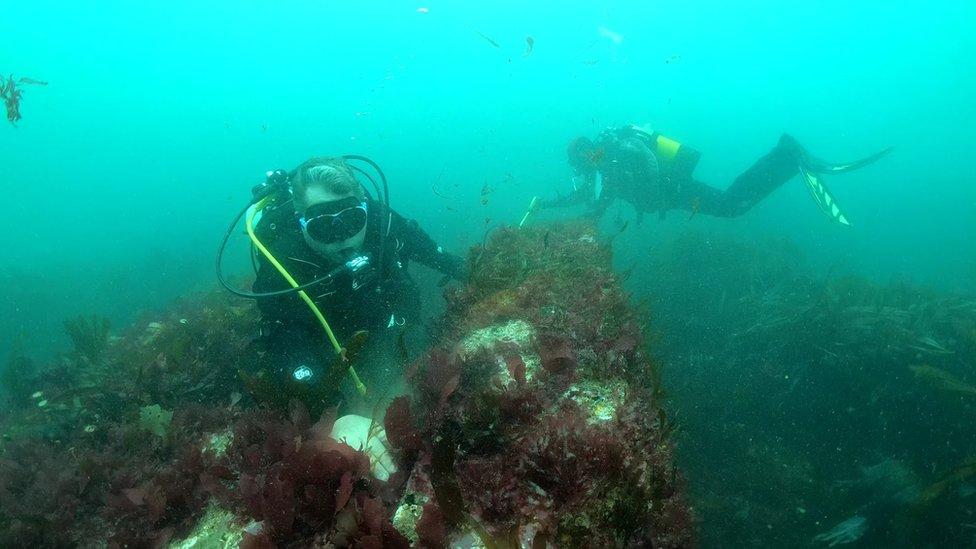 Wounded veterans explore 1906 shipwreck off north Devon coast