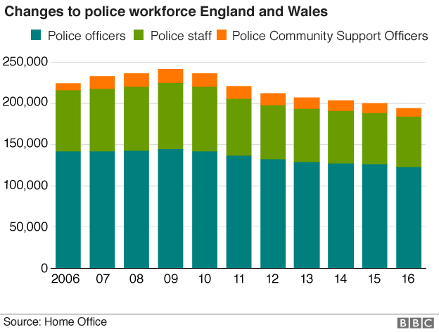 Chart showing breakdown of police numbers