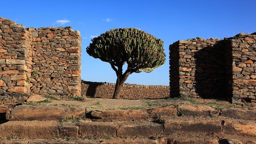 حطام قصر ملكة سبأ في أكسوم