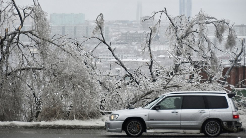 A car drives past trees covered with ice after freezing rain in the far eastern city of Vladivostok, Russia