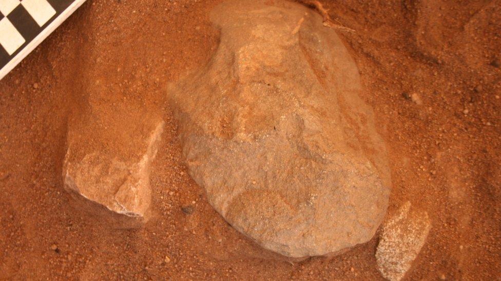 An edge-ground hatchet head being revealed