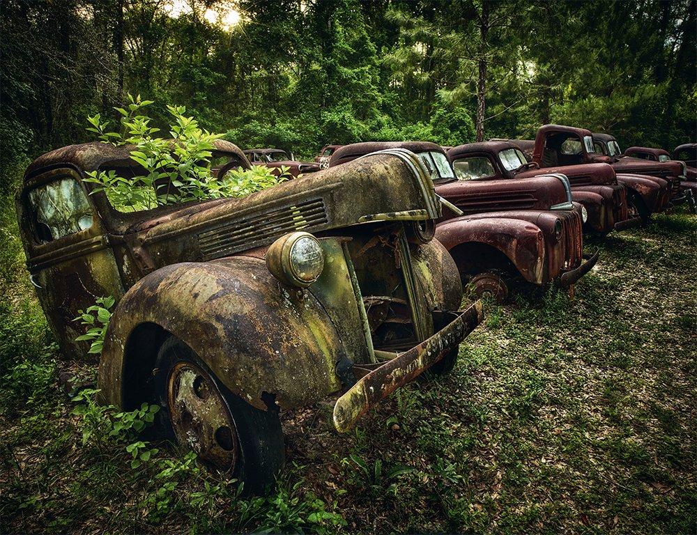 Mobil-mobil yang ditelantarkan di satu hutan