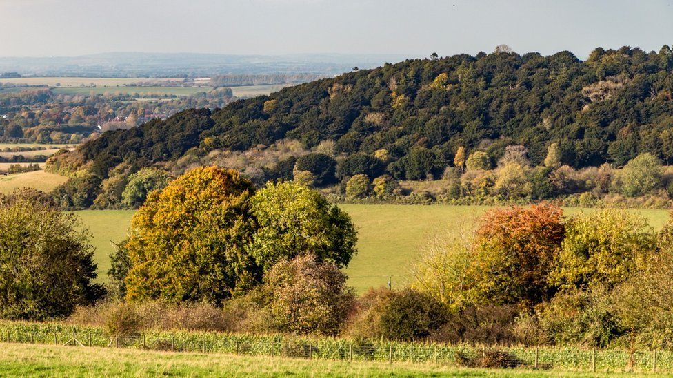 Watlington Hill estate, Oxfordshire