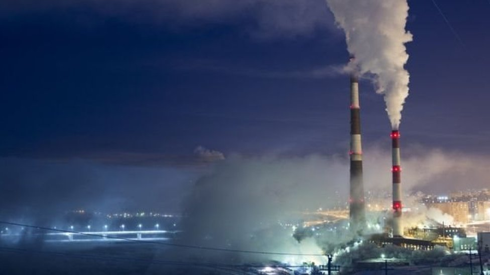 Planta que emite dióxido de carbono