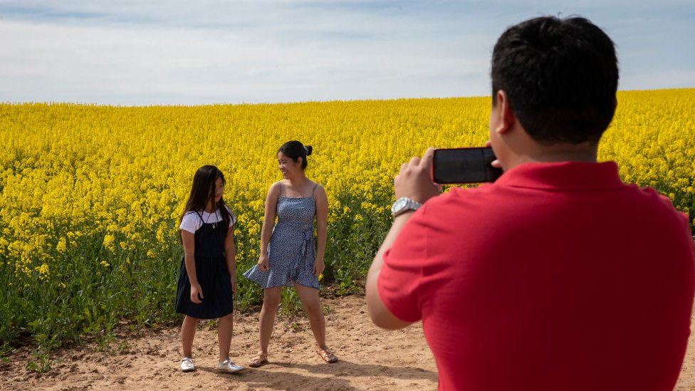 A father takes pictures of his children in front of a canola field in Harden, New South Wales