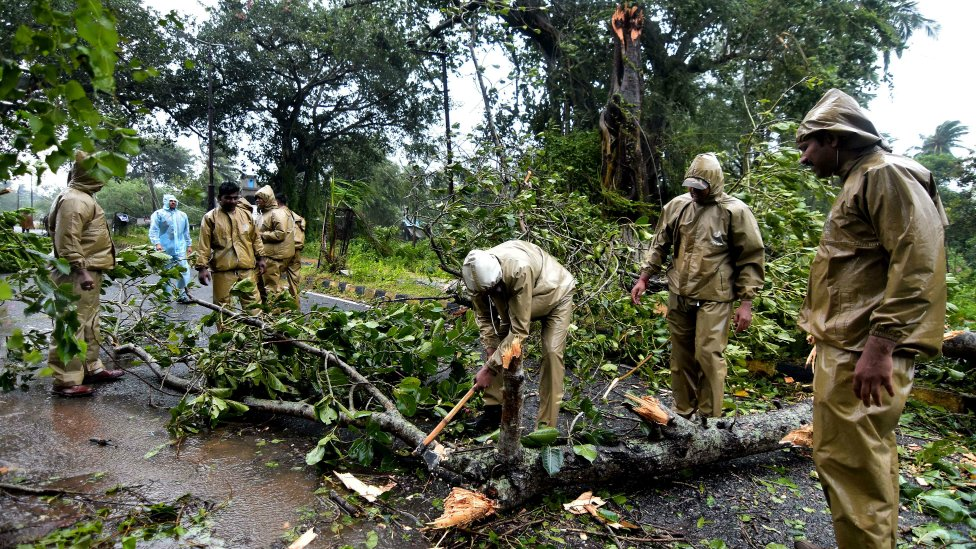 Workers cut through a fallen tree to clear the road between Gopalpur and Berhampura after heavy winds brought by Cyclone Titli struck the area, near Gopalpur in eastern Orissa state on October 11, 2018