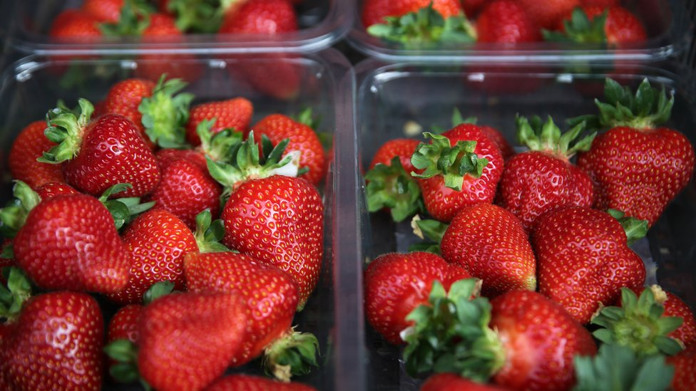 Australian strawberries: Why would someone hide a needle in fruit?