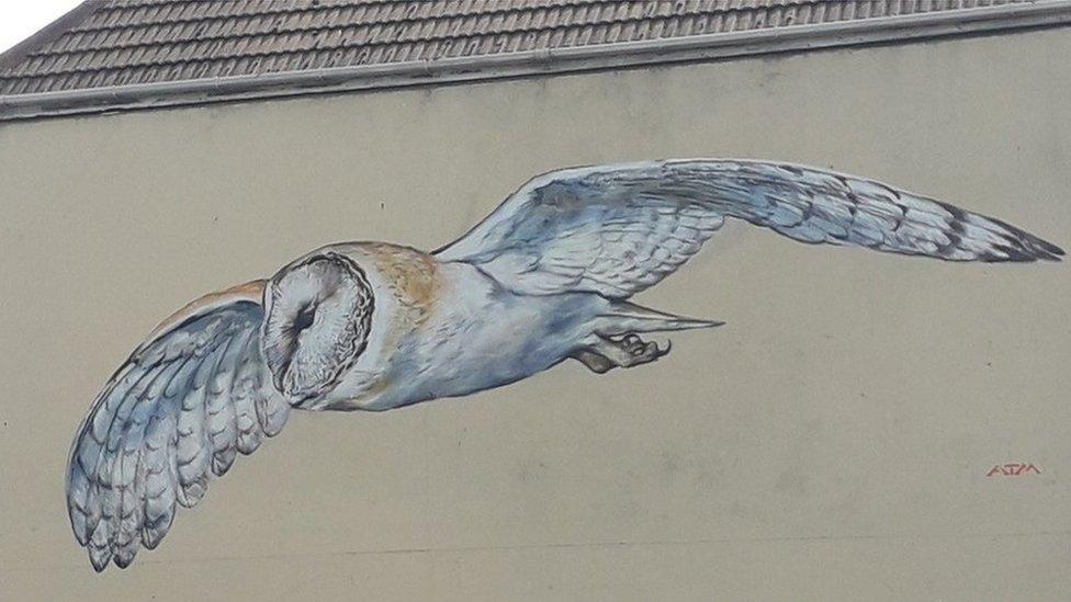 Lowestoft: Street artist ATM creates barn owl mural