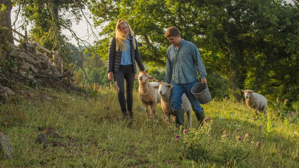 Lewis and Flora tending their sheep