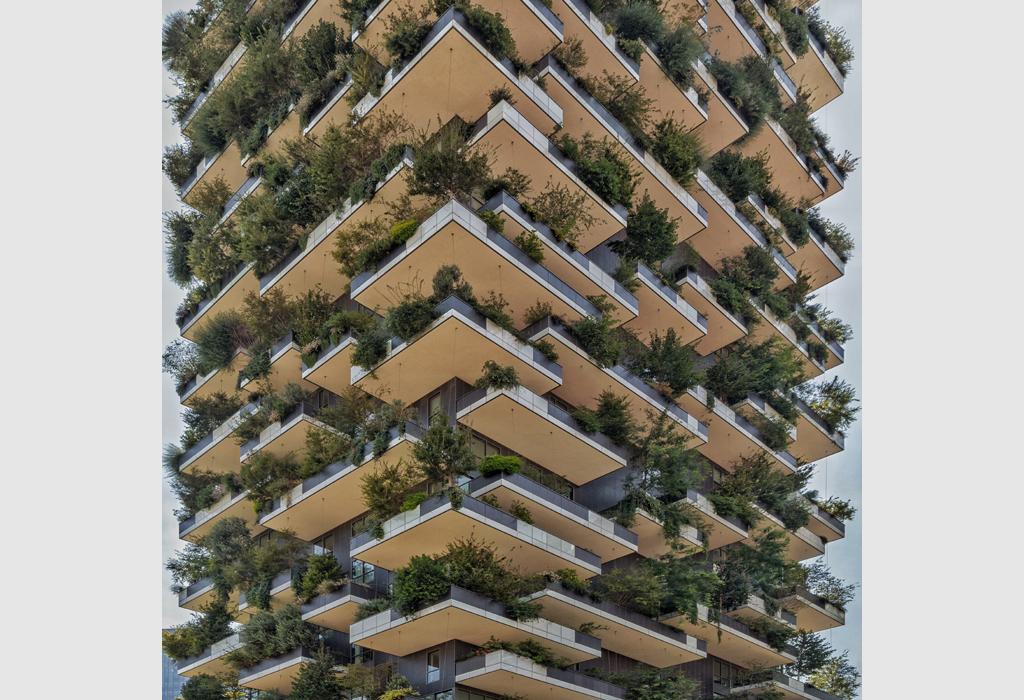 Urban Jungle by Paul Brouns