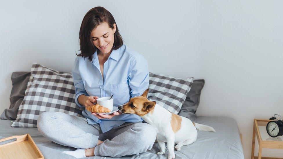 Una mujer en la cama con un perro, una taza y un croissant