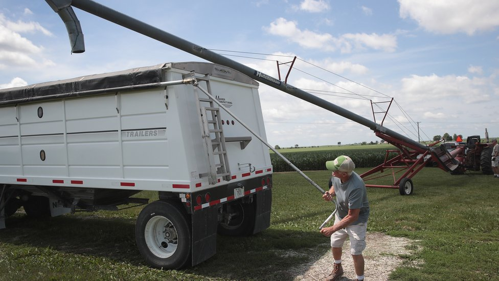 US farmer loads soybeans onto lorry - 13 June