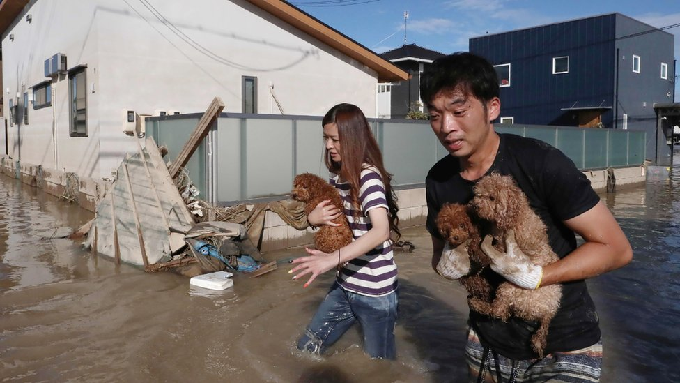 Residents rescue dogs from flooded area in Kurashiki, Okayama prefecture on July 8, 2018