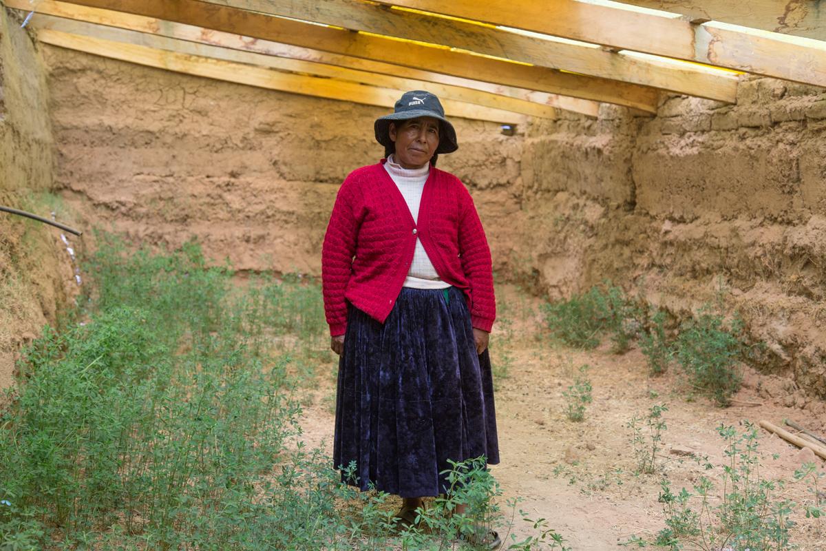 Victoria Mamane en el interior del Walipini que construyó la FAO en 2012. En su momento cortaban cebada cuatro veces al año para alimentar a las llamas.