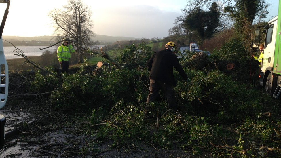 Many roads in County Londonderry have been blocked by trees
