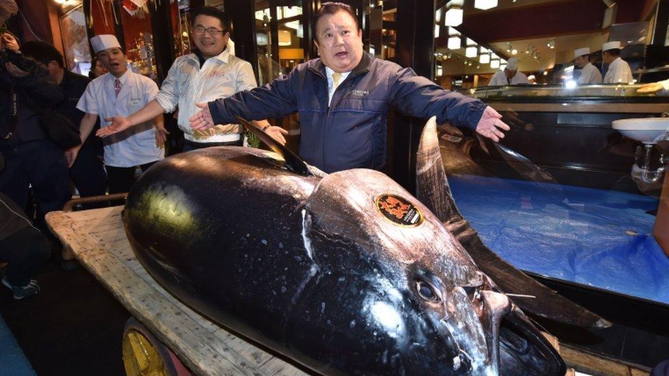 Kiyoshi Kimura con el atún de 278 kg.