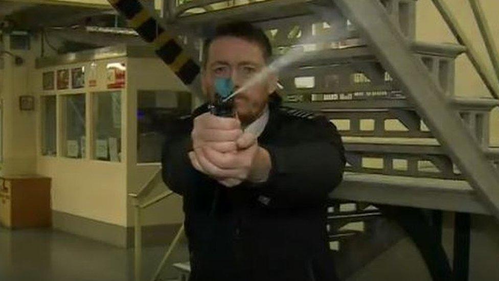 Halt prison pepper spray plan, ministers urged