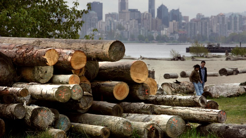 A pile of cut logs sit on Spanish Banks in Vancouver, British Columbia, Canada, on April 26, 2006